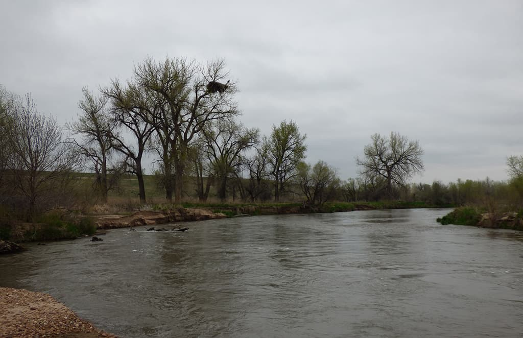 st vrain river eagles nest
